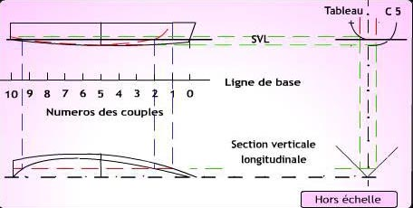 Section verticals longitudinals.